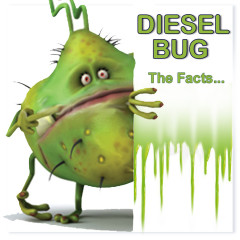 Diesel Bug Contamination